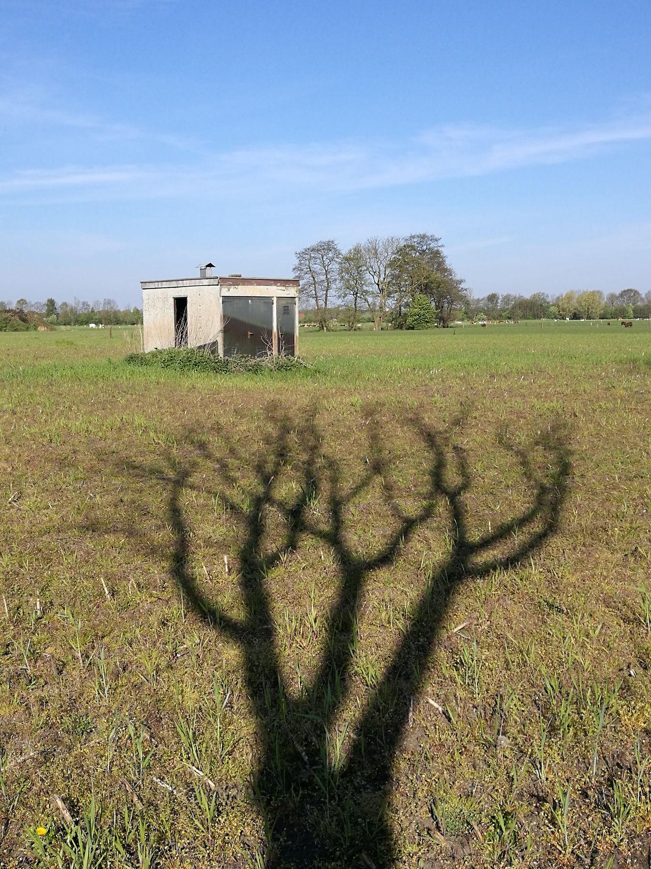 Outdoors Landscape Rural Scene Agriculture Field Uglybuildings