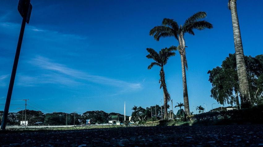 Evening walk at Honiara International Airport... Hello World Taking Photos Hanging Out Enjoying Life Solomon Islands