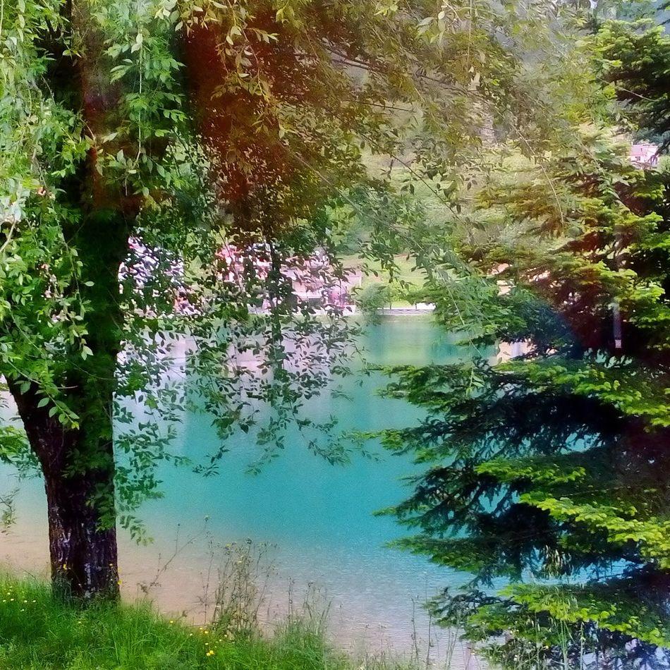 Lago Lagosirino Nemoli Potenza Basilicata Natura Verde Colori