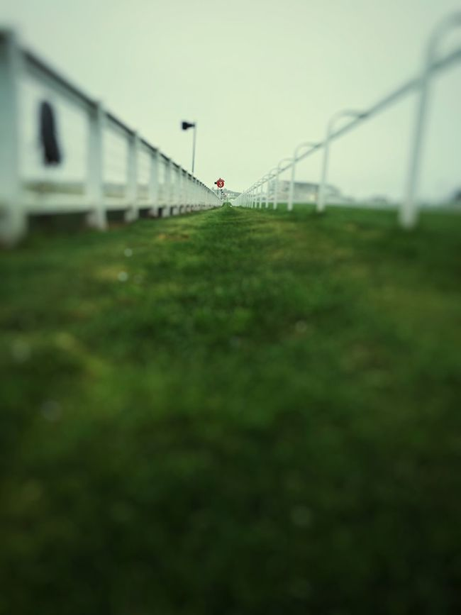 Clear Sky Railing Grassy Racecourse Sky Surface Level Outdoors Green 3 Number 3