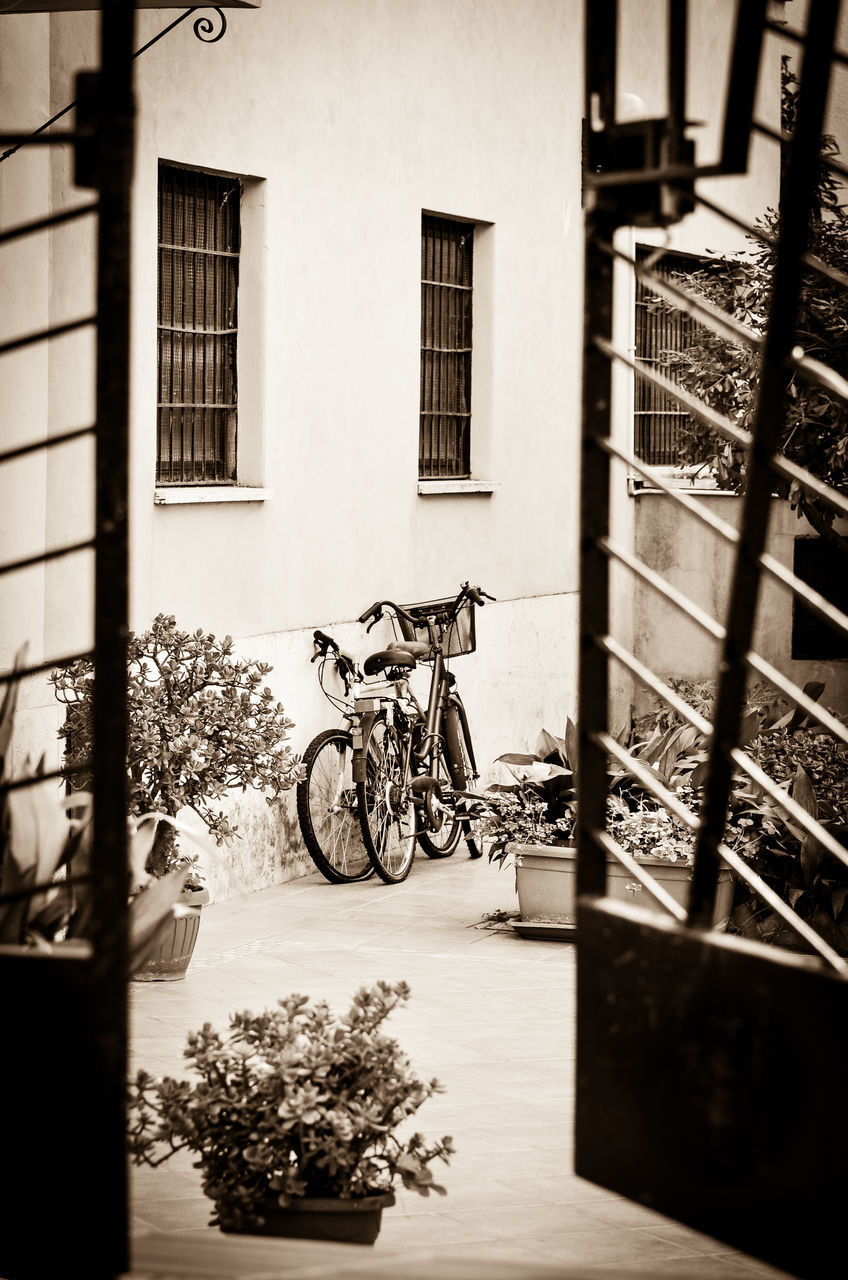 Bicycles Parked Outside Building In City