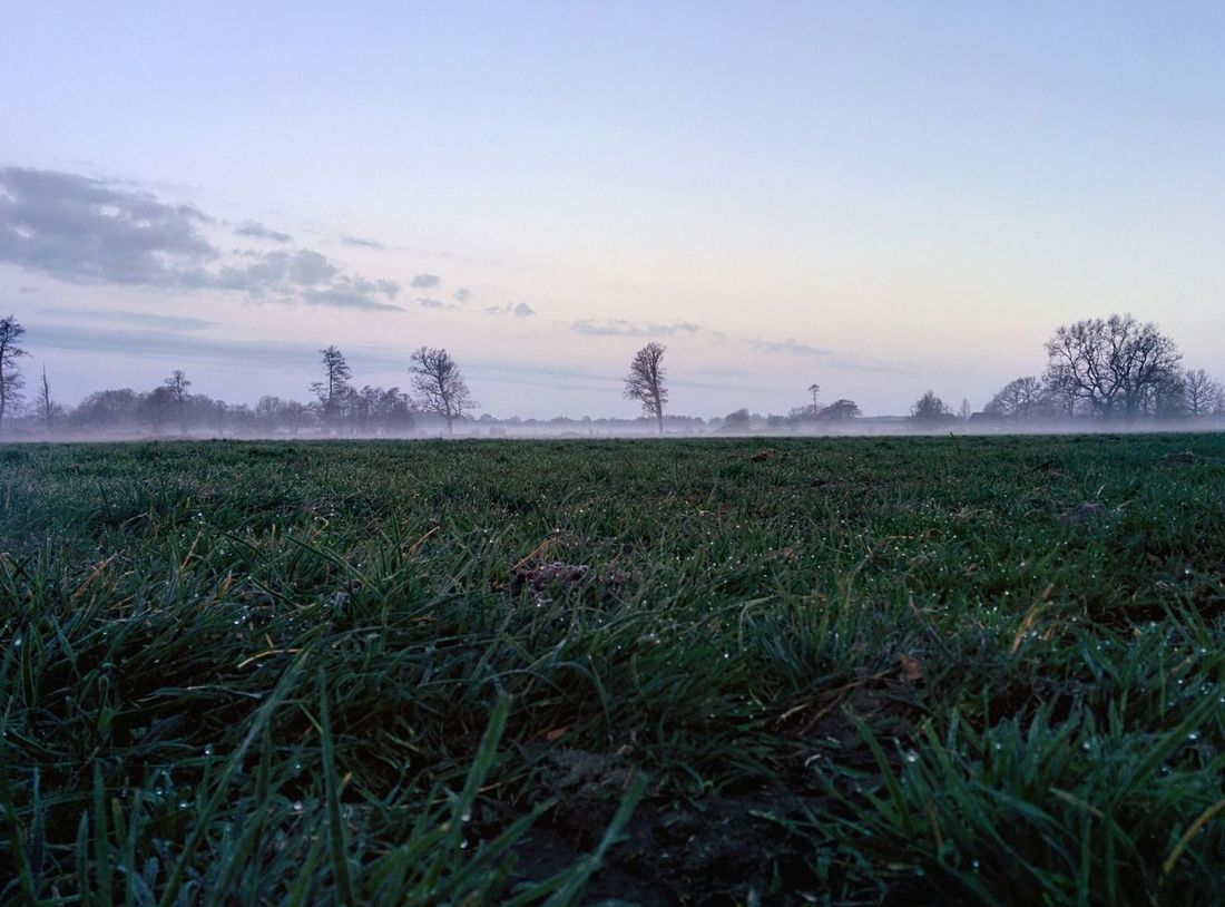 Good Morning World Landscape Wohnglück