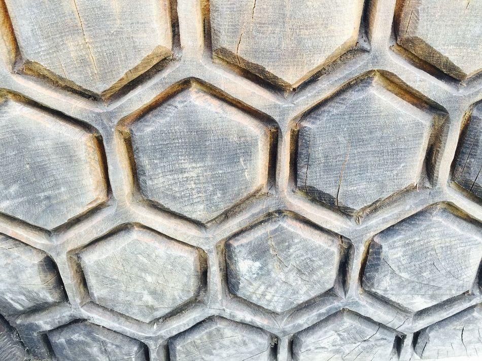 Honeycombs Taking Photos Carving Wood Art Wood Sculpture Nature Eyemphotography Robinswood Hill