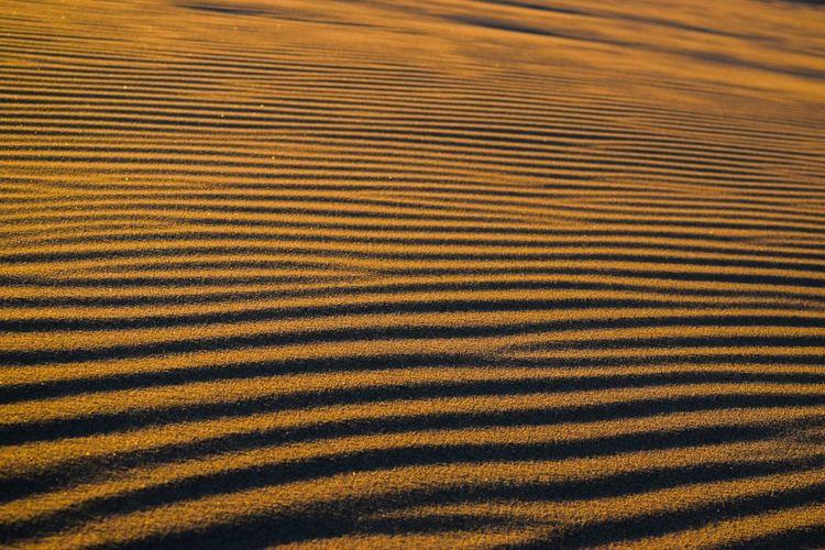 Desert Full Frame Sand Sandwaves Shadows Sunset Windshapes