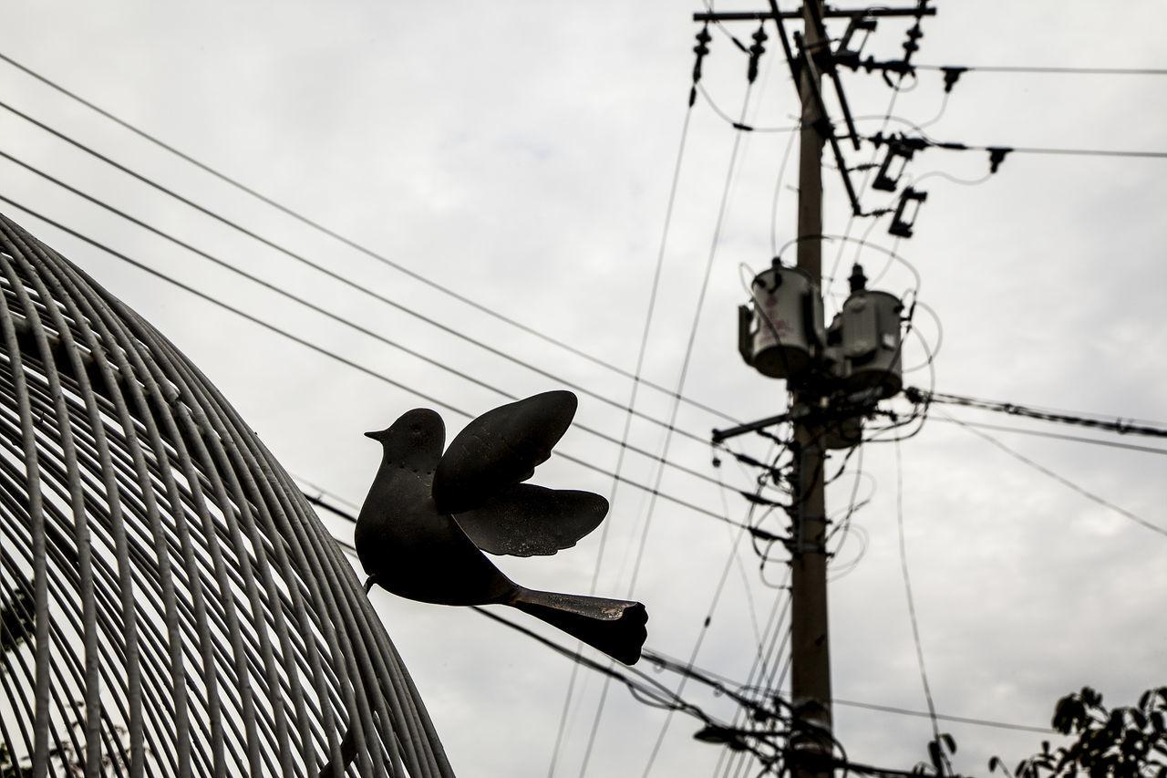 Naksan Park Pigeon Haewhadong Seoul Korea Electricity Pole Sculpture Black And White