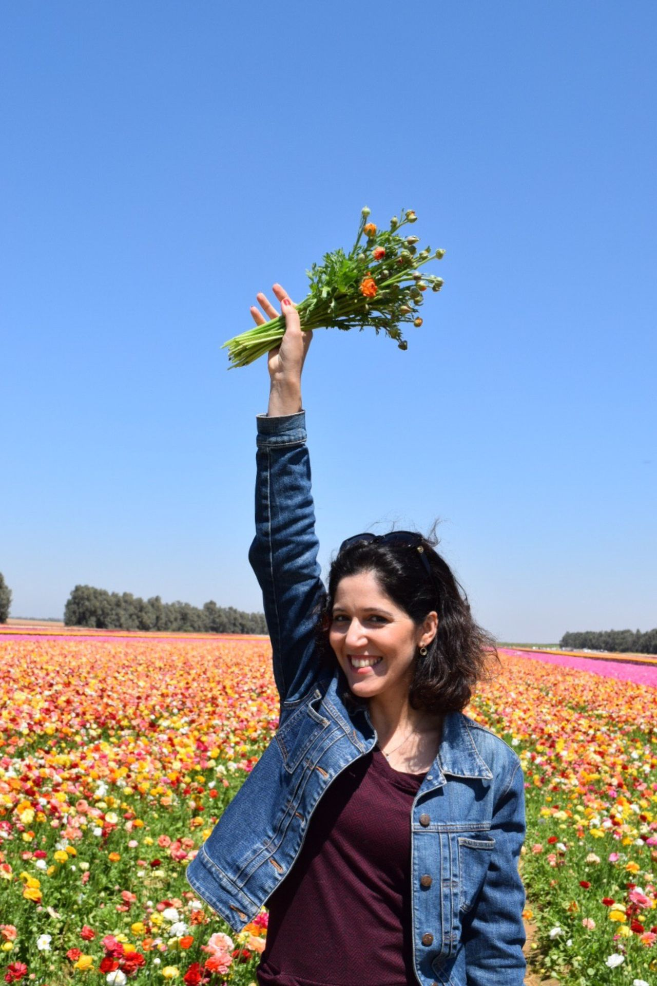 Flower Smiling One Person Happiness Mid Adult Women Nature Growth Cheerful Mid Adult Outdoors Freshness Real People Young Women Leisure Activity Agriculture Women Lifestyles Blue Clear Sky Plant Spring Summer Vertical Colorful Smile Live For The Story