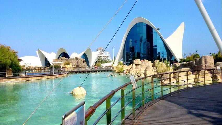 Valencia! Memories of a perfect summer