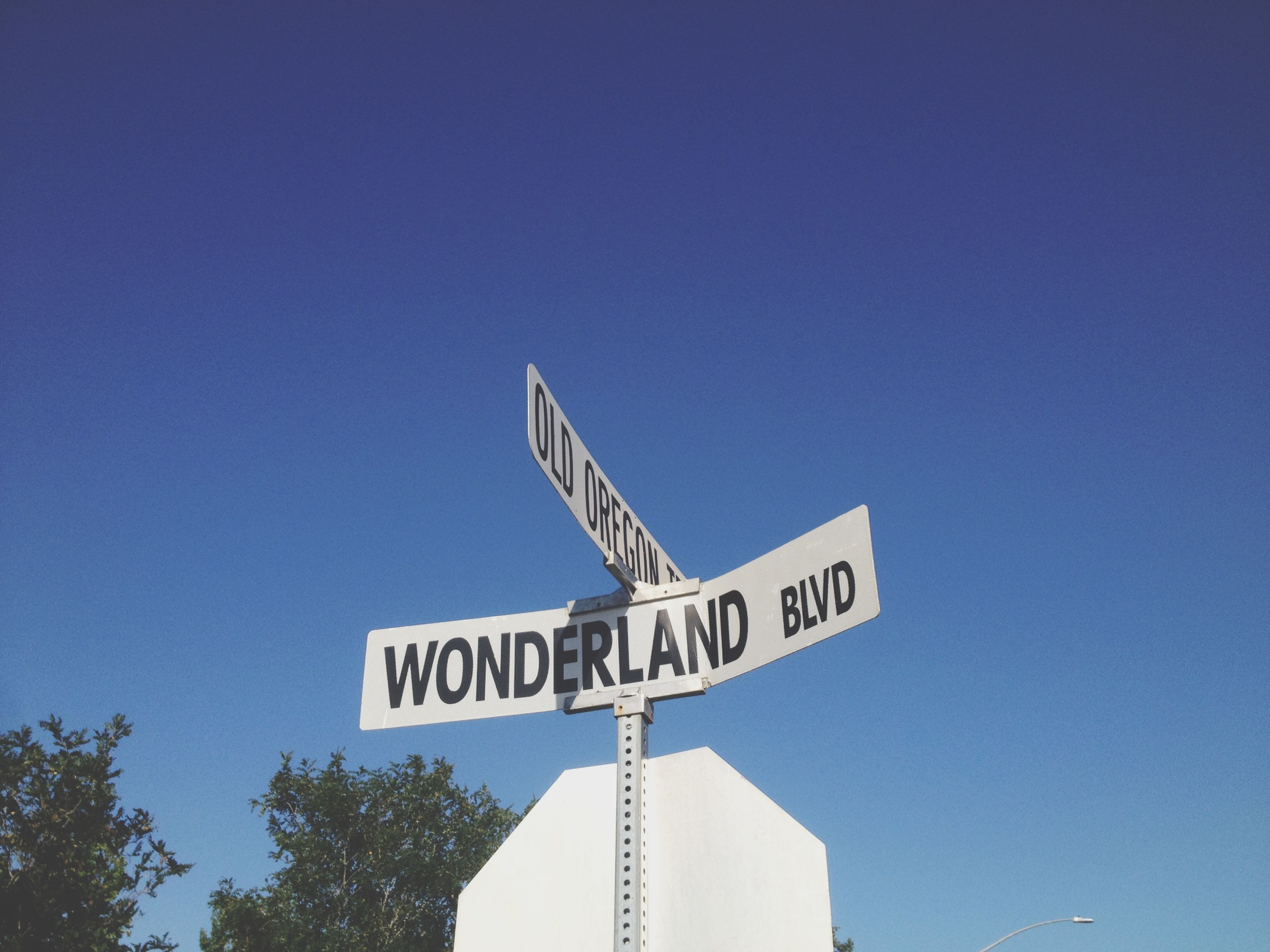 low angle view, clear sky, blue, communication, text, western script, copy space, guidance, sign, information, directional sign, arrow symbol, information sign, road sign, high section, day, direction, no people, outdoors, built structure