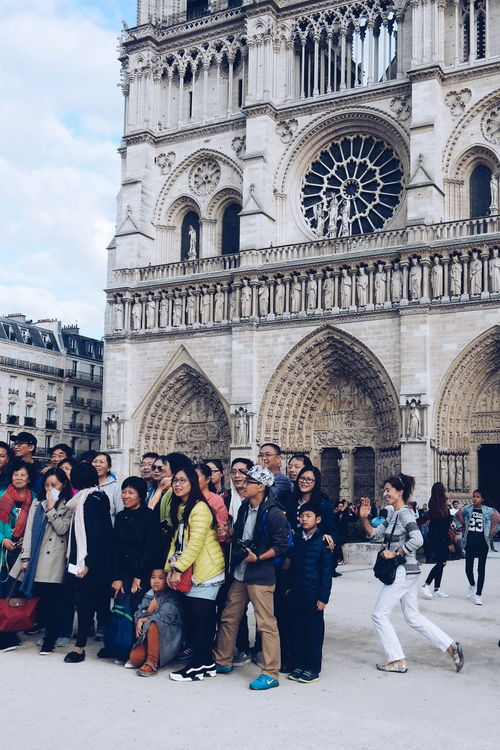Asian  Being A Tourist Church City City Life Cool Crowd Discover Your City Group Group Photo Notre Dame Notre Dame De Paris Paris Paris, France  Paris.fr People Photography Peoplephotography Stand Out From The Crowd Taking Photos Taking Photos Of Tourists Taking Pictures Tourisme Tourist Tourist Attraction  Tourist_spot Tourists