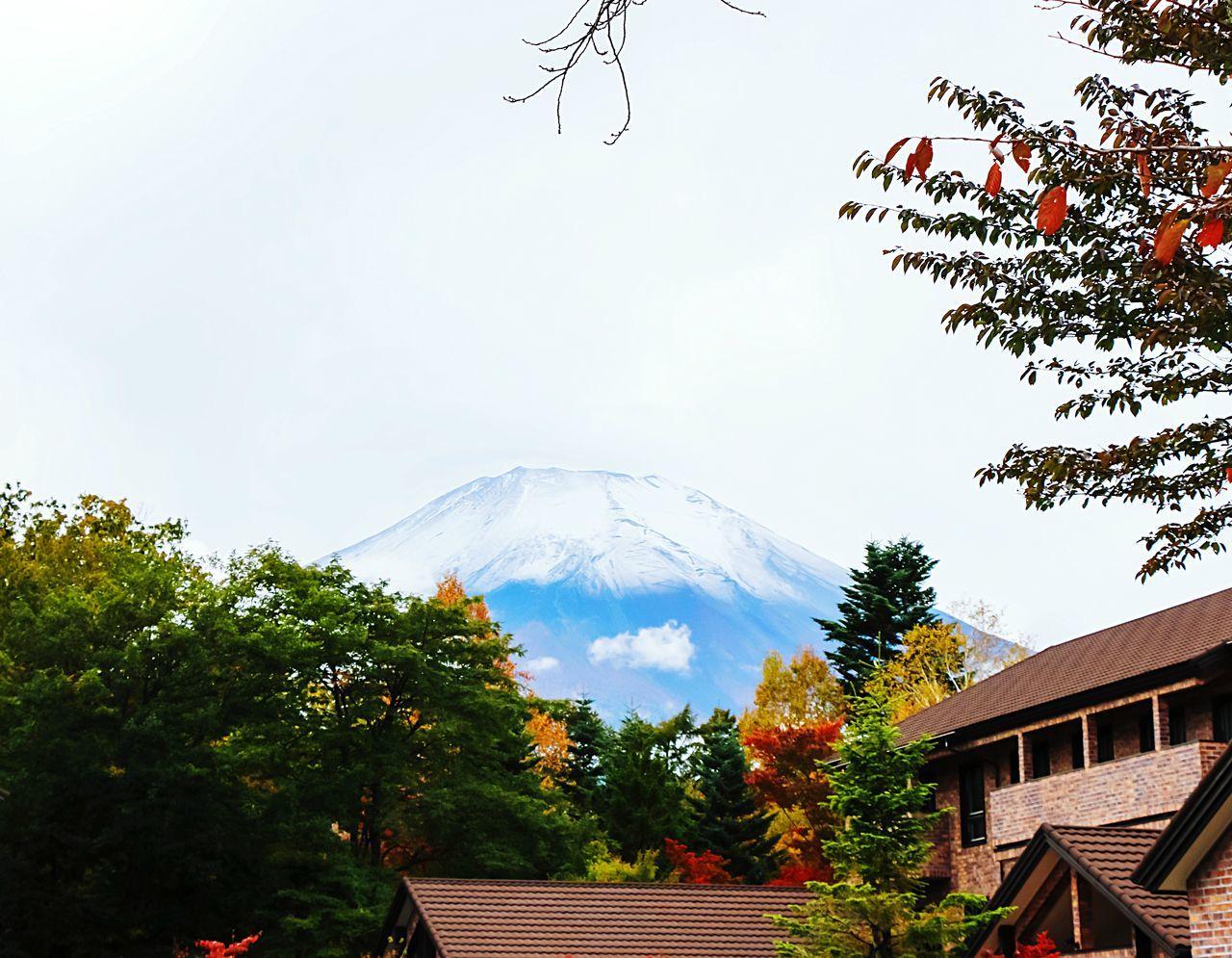 A Series Of Fuji Mountain's Picture -6. Autumn Fujimountain EyeEm Best Edits Beautiful Nature Autumn Leaves Autumn Colors Fuji Mountain Mt.Fuji Natrual Beauty  Fujiyama