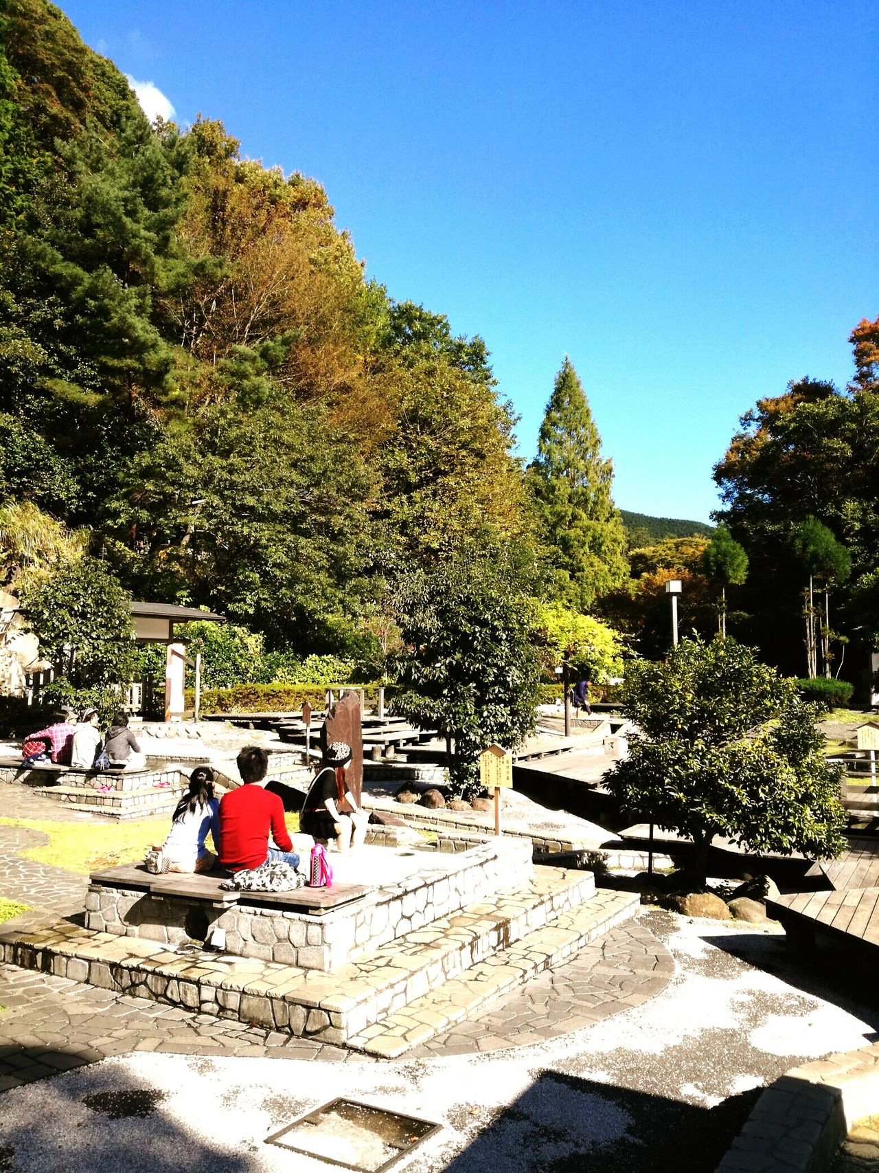 Tree Real People Sunlight Clear Sky Leisure Activity Water Outdoors Day Sky Slide - Play Equipment Swimming Pool Built Structure Growth Men Nature Architecture Beauty In Nature People Forest Travel Journey Beauty In Nature Yugawara Secret Place Onsen