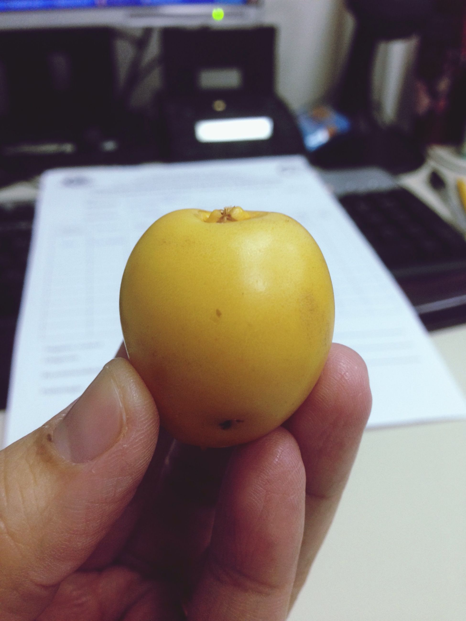 person, holding, part of, cropped, food and drink, close-up, personal perspective, human finger, food, indoors, yellow, focus on foreground, unrecognizable person, fruit, freshness, healthy eating, table