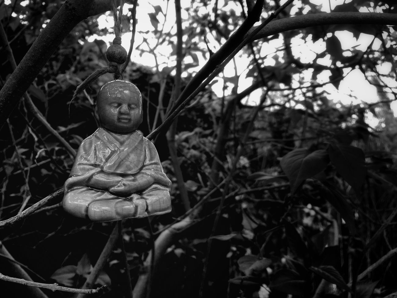 Hanging Out Buddha Garden Photography No People Peaceful