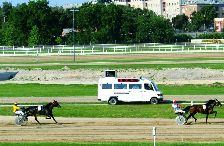 Horse Horseriding Horseracing Absolutly Winner Winnerwinner First Everybody Lost Bestphoto Bestshot Taking Photos Check This Out Eyeemcollection Todayphotography Kincsempark Betting Race Victory