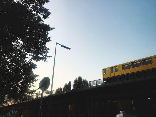 Tree Clear Sky Transportation Railing Day Outdoors Sky Bridge No People Railings