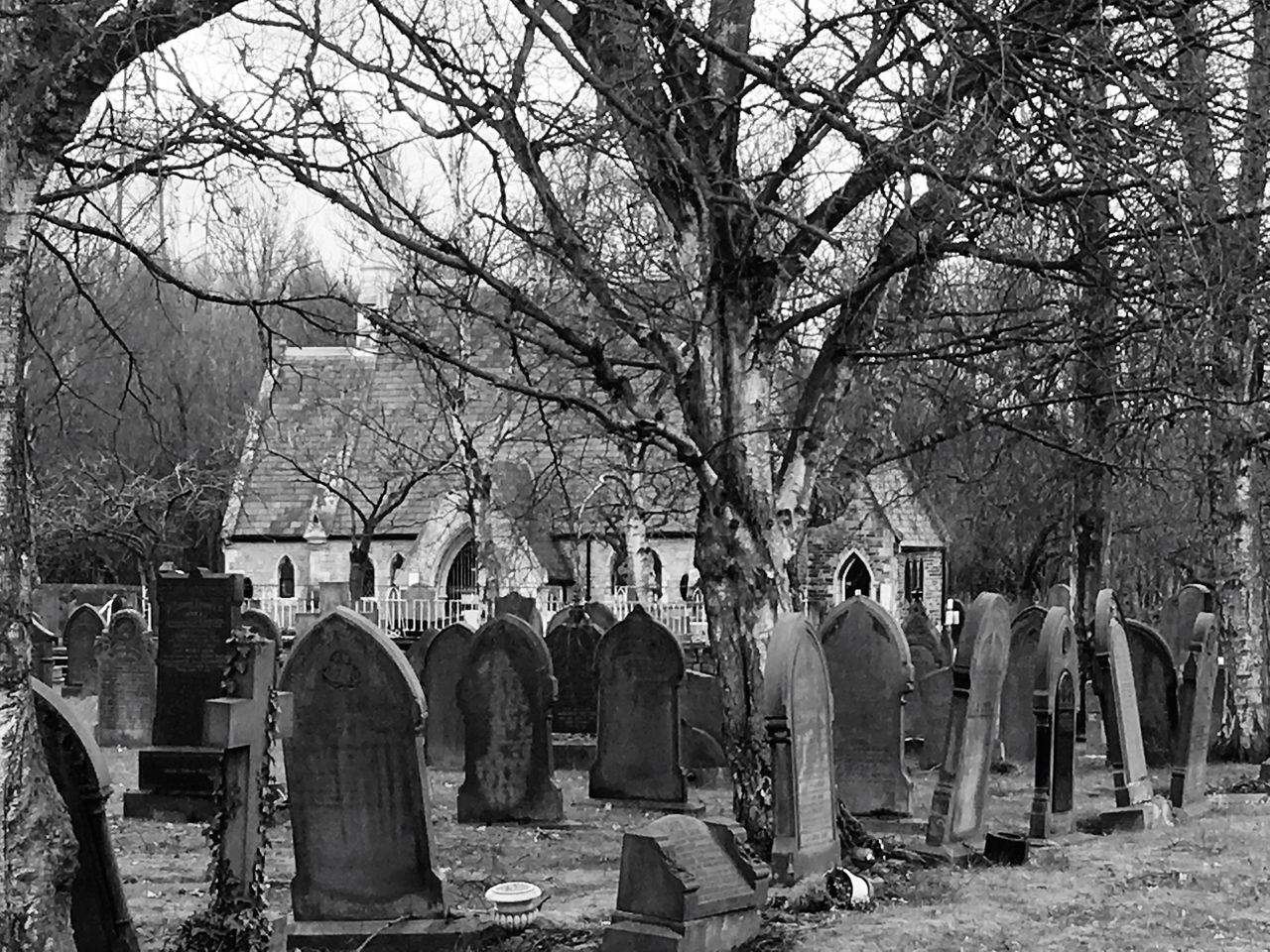 tombstone, cemetery, tree, graveyard, gravestone, bare tree, cross, memorial, grave, outdoors, religion, spirituality, grief, nature, day, no people