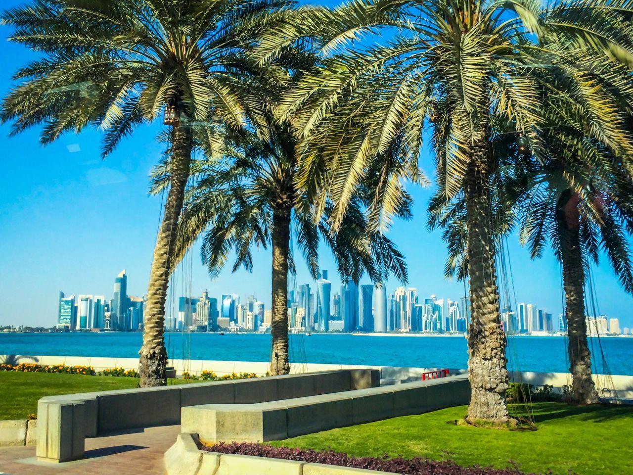 Qatar Skyline!