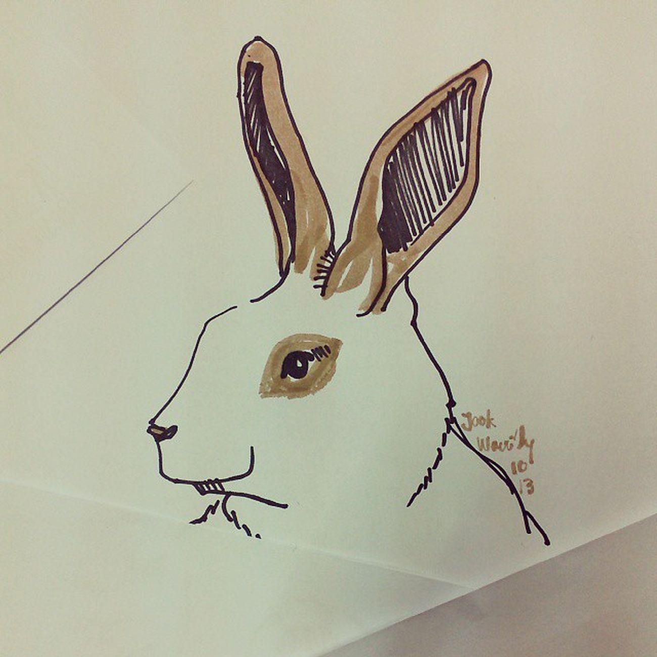 เจ้าจุก Rabbiy Bunny  Draw Illus