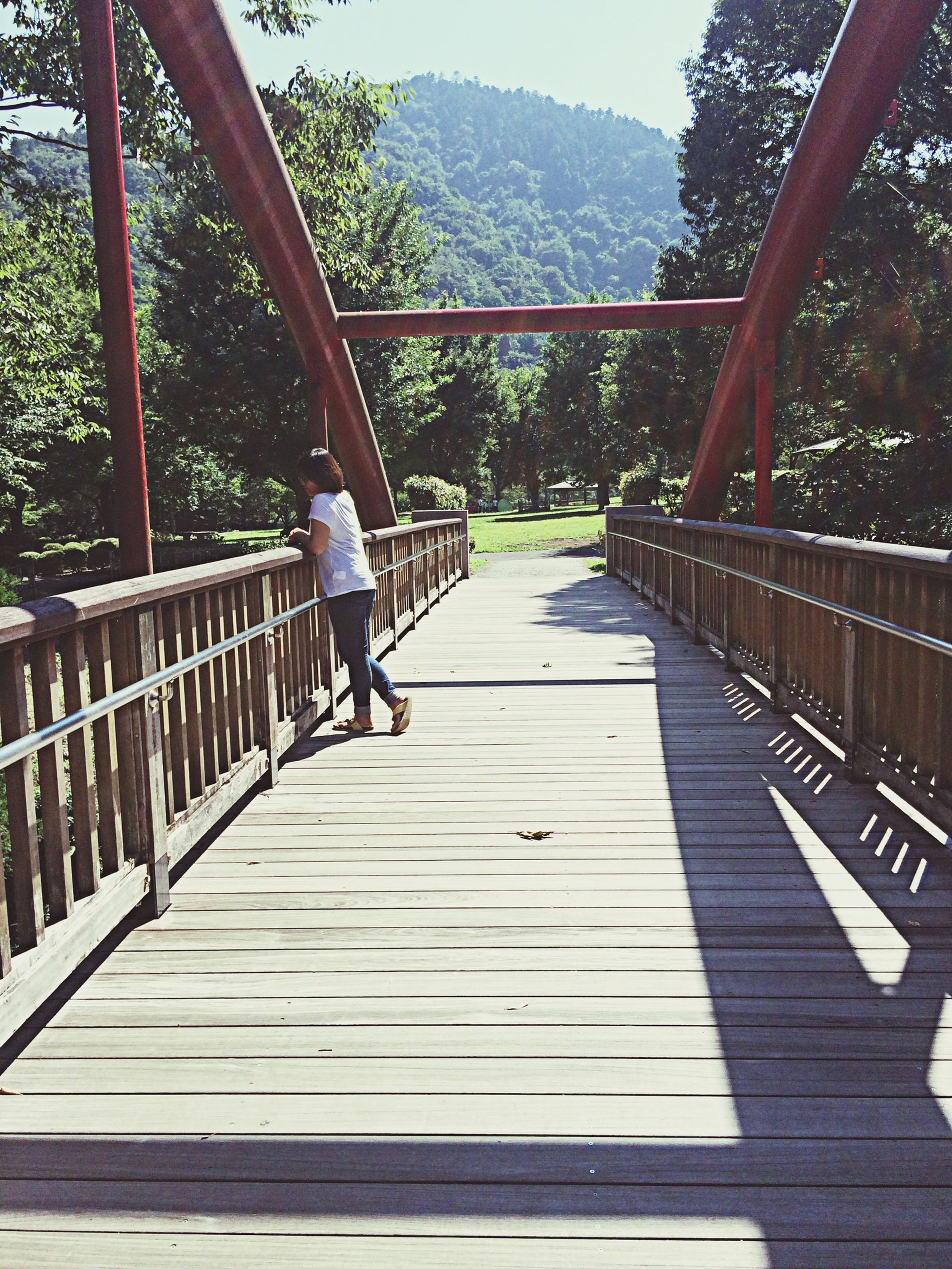 tree, railing, lifestyles, leisure activity, full length, footbridge, mountain, bridge - man made structure, built structure, steps, rear view, steps and staircases, connection, the way forward, casual clothing, person, walking, men