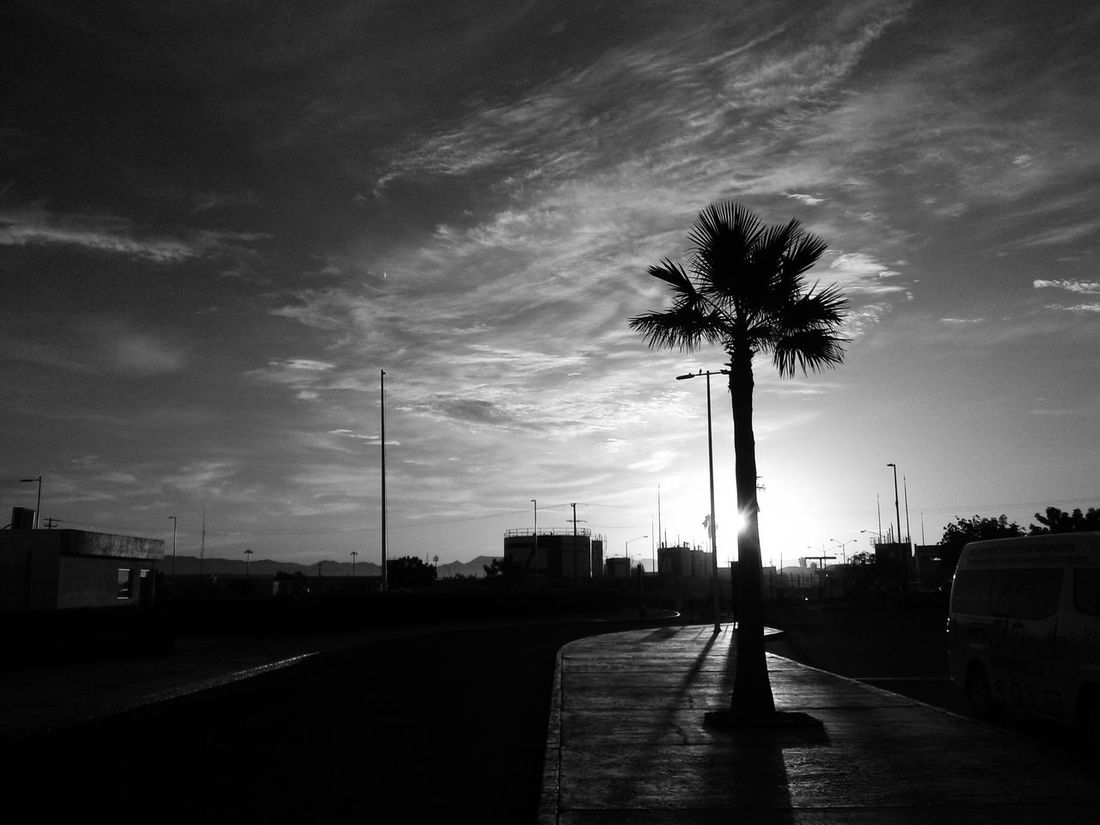 Un amanecer mas Black & White EyeEm Best Shots - Black + White Mexico De Mis Amores Blackandwhite Photography Fotografia Urban Photography Blackwhite Blackandwhite Black And White Collection  EyeEm Black&white!