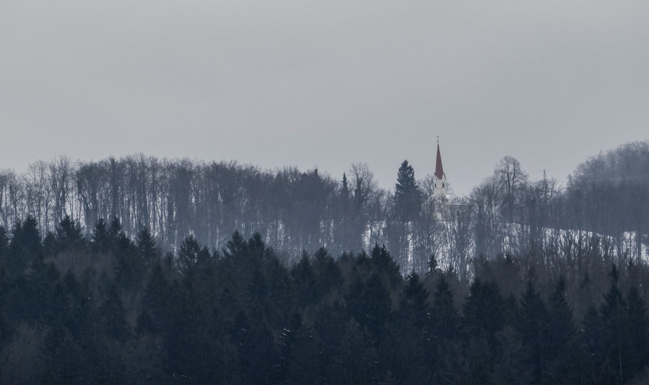 Beauty In Nature Church Church In The Mountains Day Forest In The Middle Of Forest In The Middle Of Nowhere Mountain Nature No People One Building Outdoors Silhouette Sky Tree Treetop