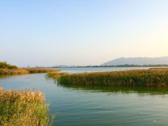 IPhoneography 徳島県 EyeEm Nature Lover Landscape