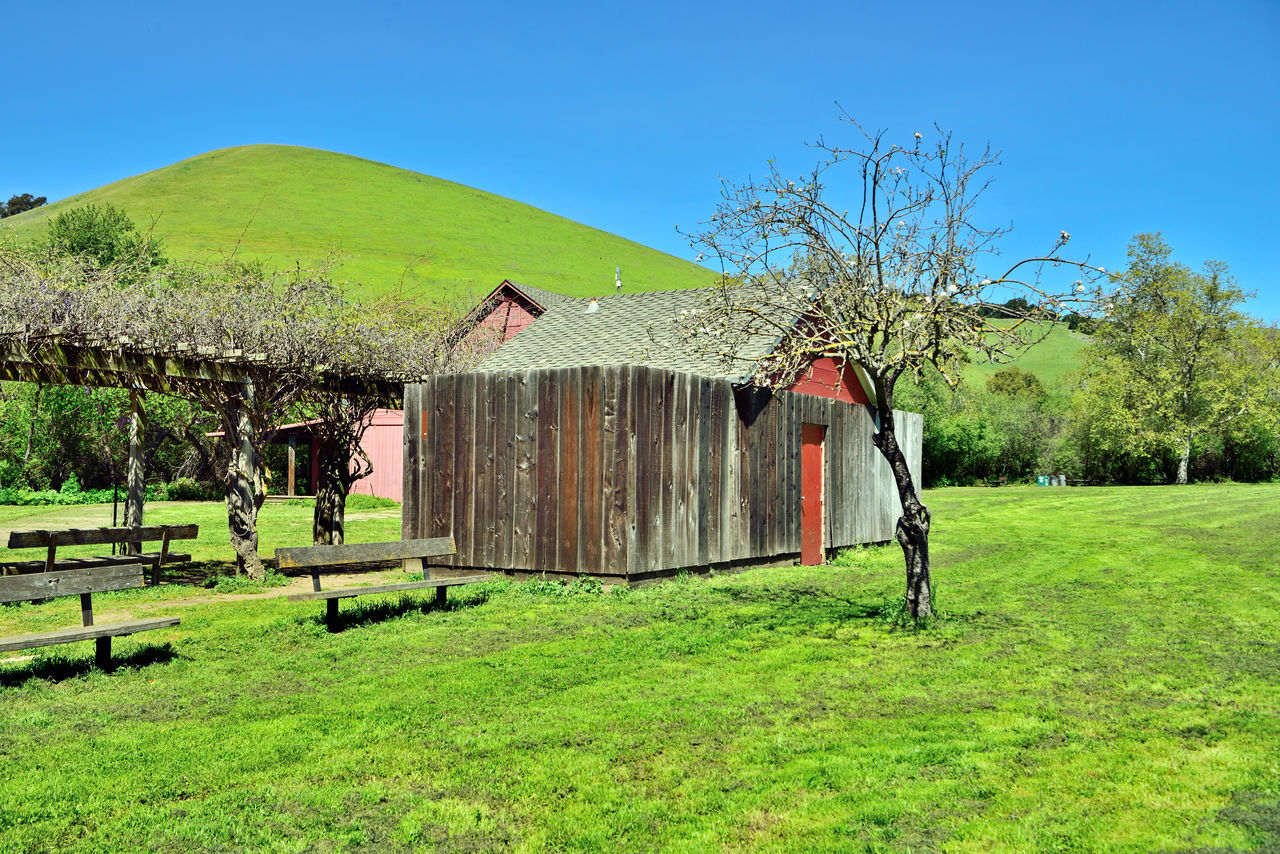 Visitor's Barn @ Garin 1 Hayward, Ca. H.A.R.D Garin Regional Park Eastbay Hills Red Barn Eastbay Regional Park District Canyon & Valleys Rolling Hills Green Meadows Apple Orchards Apple Tree Blossoms  Wooden Benches Pergola Wisteria Vines Blue Sky Storage Shed Landscape Landscape_Collection Landscape_photography Nature Beauty In Nature Nature_collection