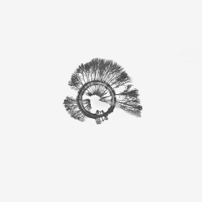 Like a shell. Shell Minimal Minimalism Minimalism Photography Check This Out Circular Panaroma Circular+