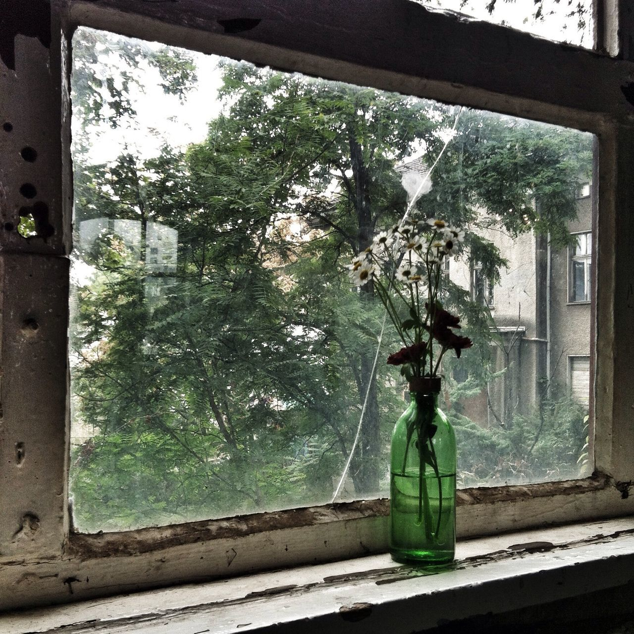 Urban Nature and Decoration at The 2014 EyeEm Festival & Awards
