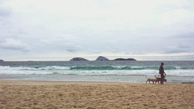 Ipanema Sunset_collection Riodejaneiro October2015 Walking On The Beach Dogs Life Make Friends Together Eyem Nature Lovers  Eu Amo!!