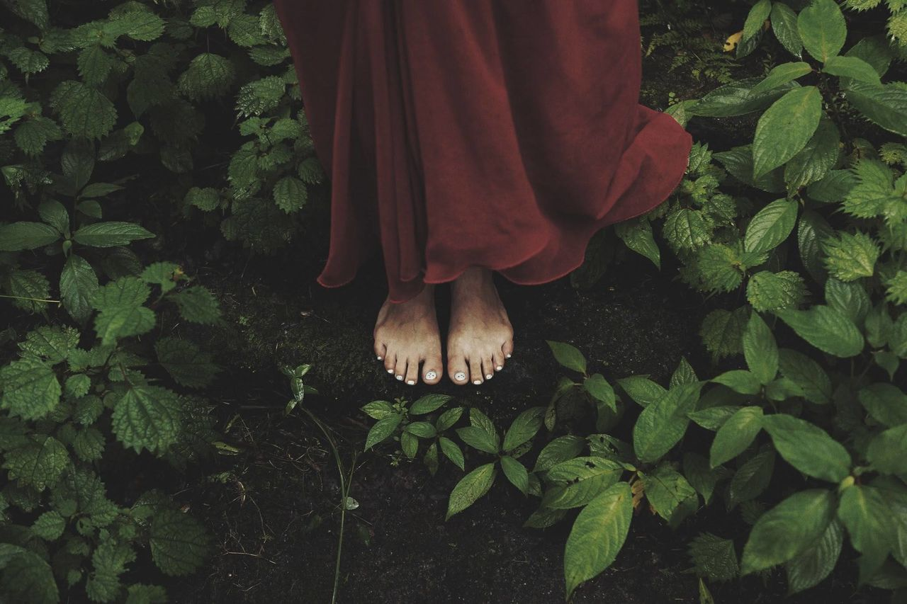 Beautiful stock photos of green, Barefoot, Day, Green, Human Body Part