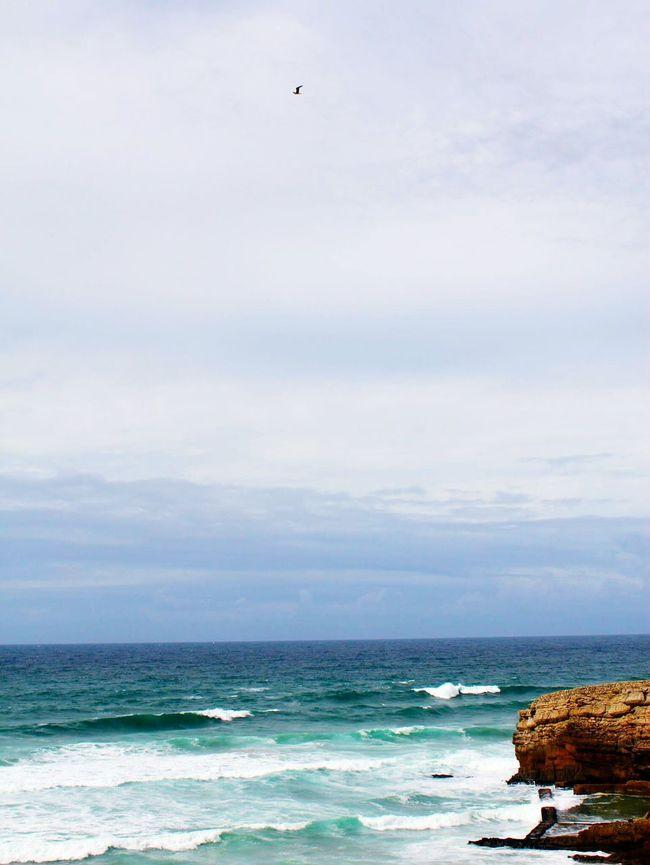 Cashcash Ocean Oceanside Portugal