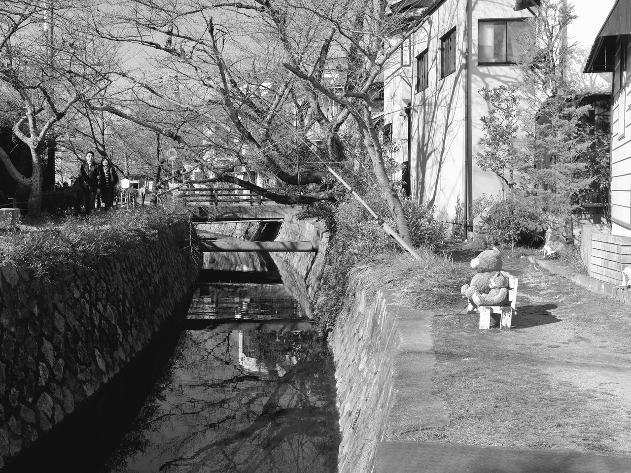 Bears looking at people walking on philosopher's path in Kyoto, Japan. Japan Kyoto Philosopher's Way Bear Street Photography X100t X100gang Fujifilm Fujifilm_xseries Black And White (null)Monochrome Photography