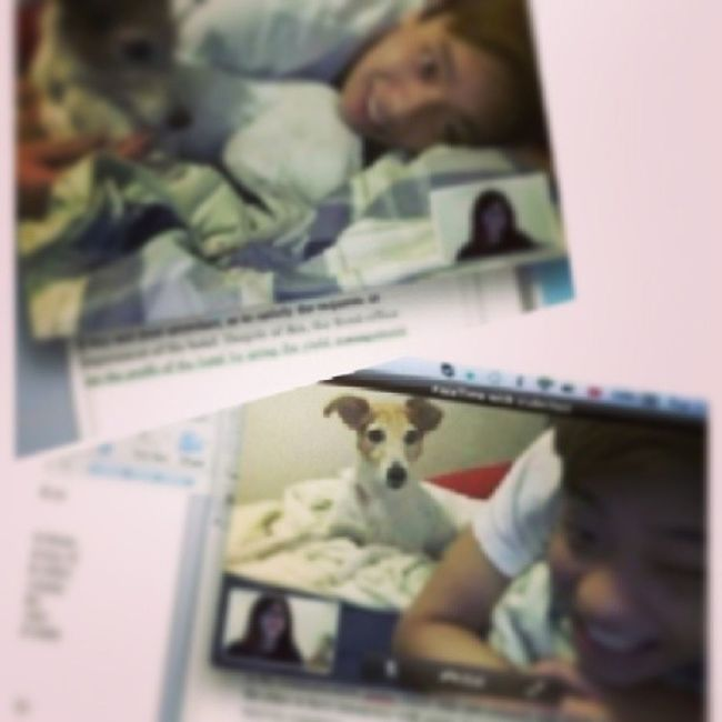 Spoiled by love<3 thanks for being by my side while i do my assignment love u muahh x Hk Hkers NZ Auckland spoiled love touched muah hkig jack jrt facetime assignments