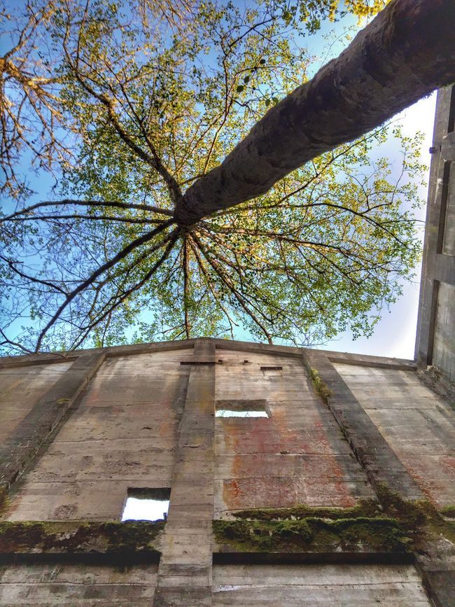 The Great Outdoors With Adobe Abandoned Buildings Old Abandoned Mill Scenic View Perspective Views Abandoned Neat Places Abandoned Places Rustic Trees And Sky Exploring