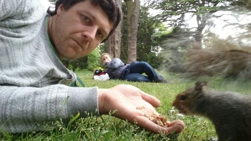Capturing Movement Squirrel Photobomb Need For Speed Fast Food , Take Away
