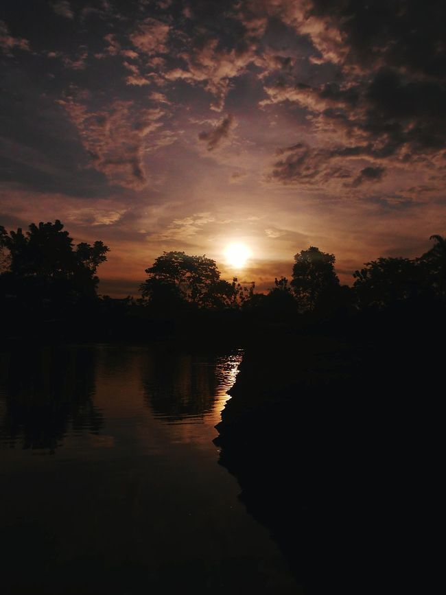 Silhouette Sunset Tree Tranquil Scene Water Scenics Cloud - Sky Beauty In Nature Outdoors Sky Sun Reflection Lake Growth Cloudy Tranquility Nature Cloud Calm Majestic The Moment - 2016 Eyeem Awards Capture The Moment The Eyeem Collection At Getty Images Beauty In Nature Afternoon