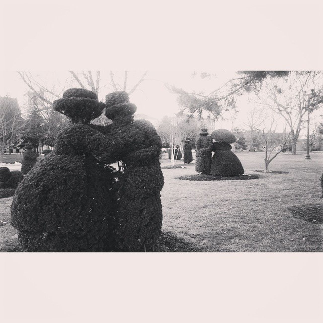 Blackandwhite Topiarygarden Grasssculpture Columbusohio