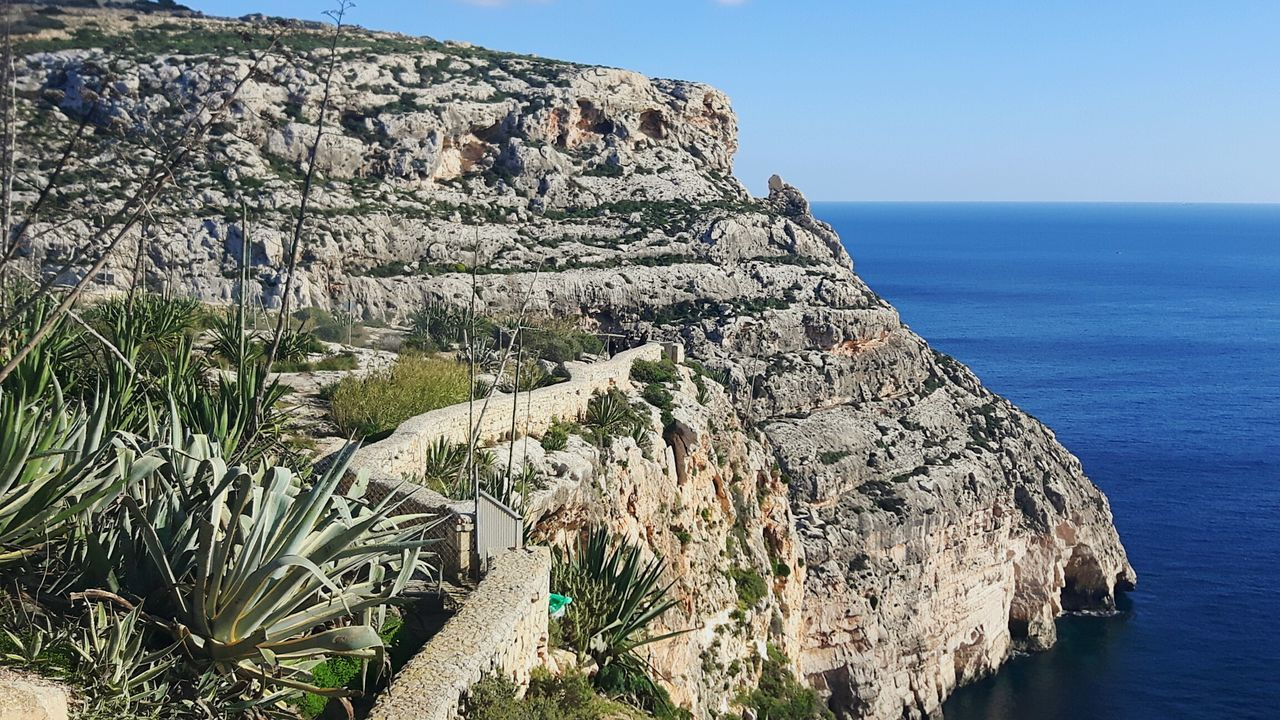 Tree No People Nature Branch Sky Growth Outdoors Cliffs Wied Iz-Zurrieq Tourist Attraction  Environmental Conservation
