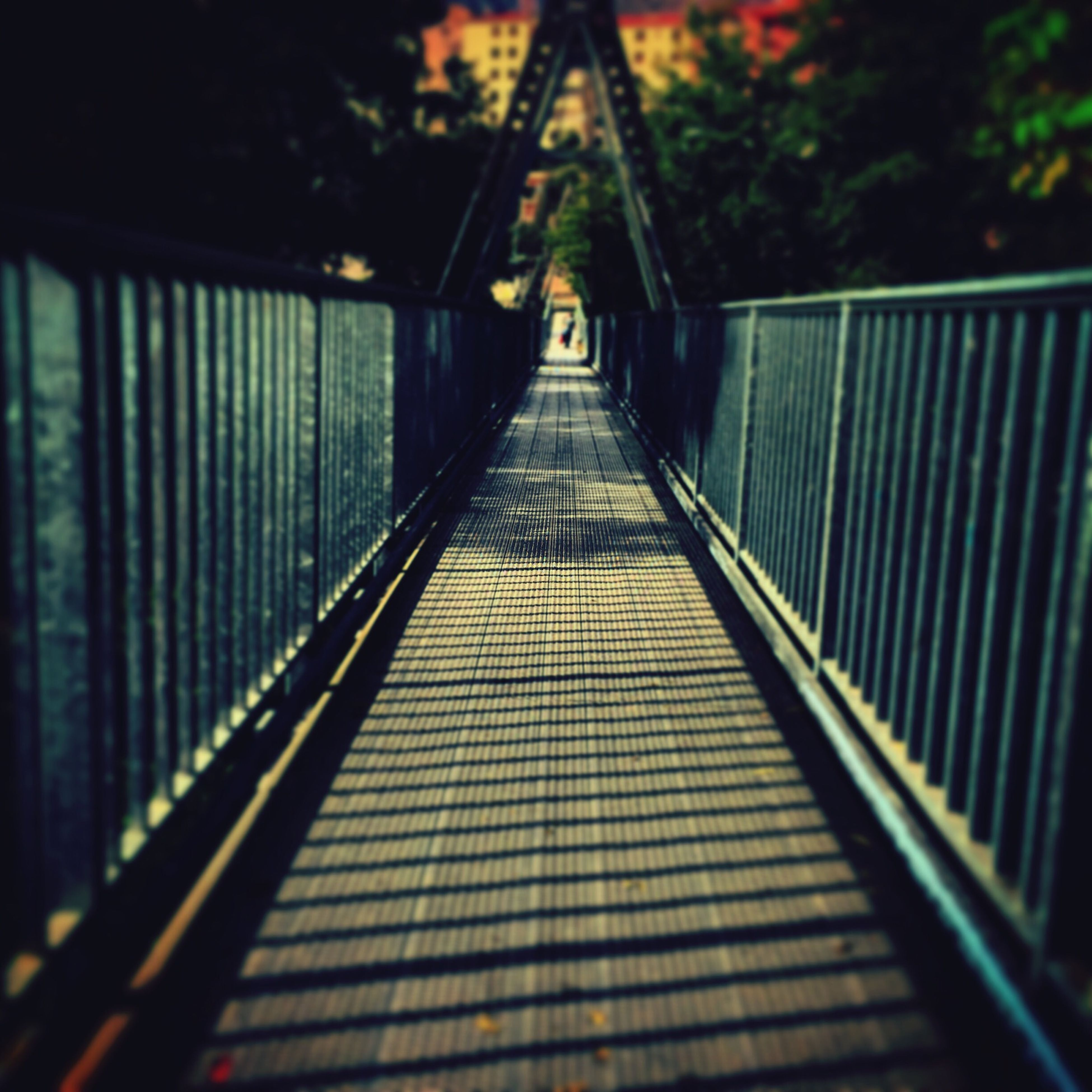 the way forward, railing, diminishing perspective, vanishing point, built structure, footbridge, steps, architecture, steps and staircases, staircase, indoors, connection, metal, narrow, tree, shadow, transportation, long, bridge - man made structure, empty