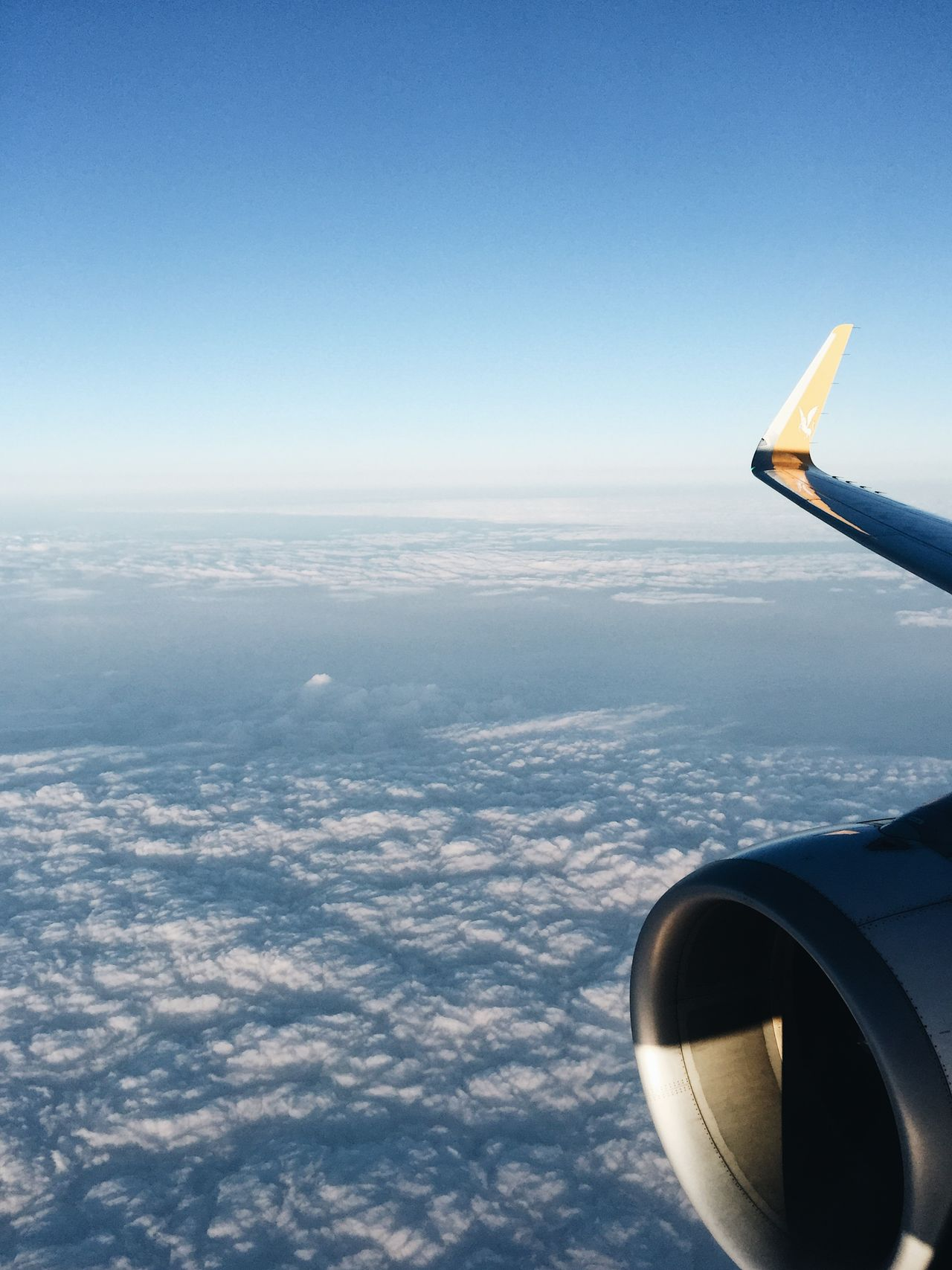 Airplane wing and aereal view at Turkey Aereal View Aerial View Air Vehicle Aircraft Wing Airplane Airplane Wing Beautiful Beauty In Nature Beauty In Nature Flying Jet Engine Journey Landscape Mid-air Mode Of Transport Nature Pegasus Pegasus Airlines Scenics Transportation Travel Travel