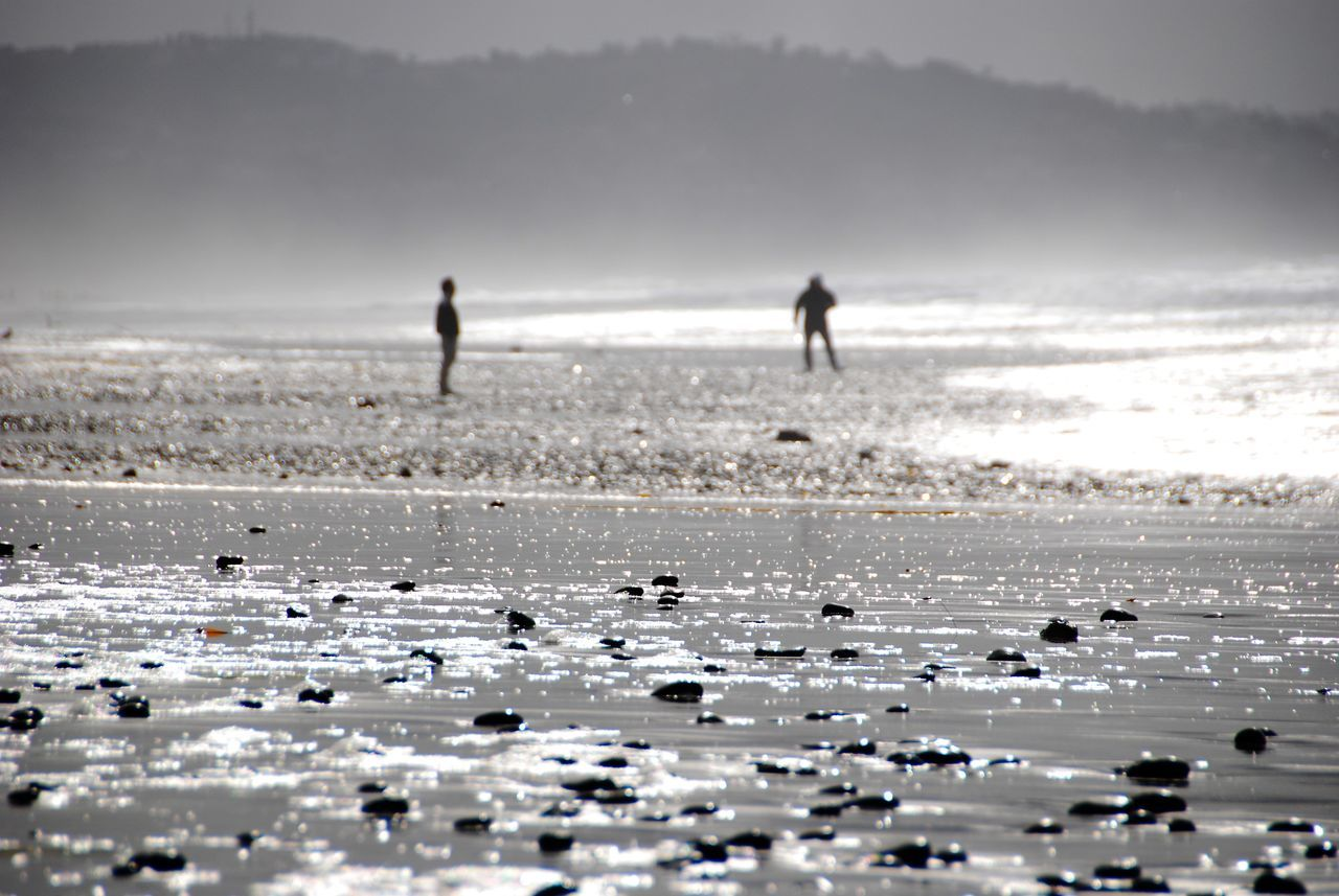 Father and Son Adult Beach Beauty In Nature Day Fresh On Eyeem  Misty Morning Nature Only Men Outdoors Pebbles On A Beach People Sea Shimmering Waters Sky Togetherness Water Finding New Frontiers