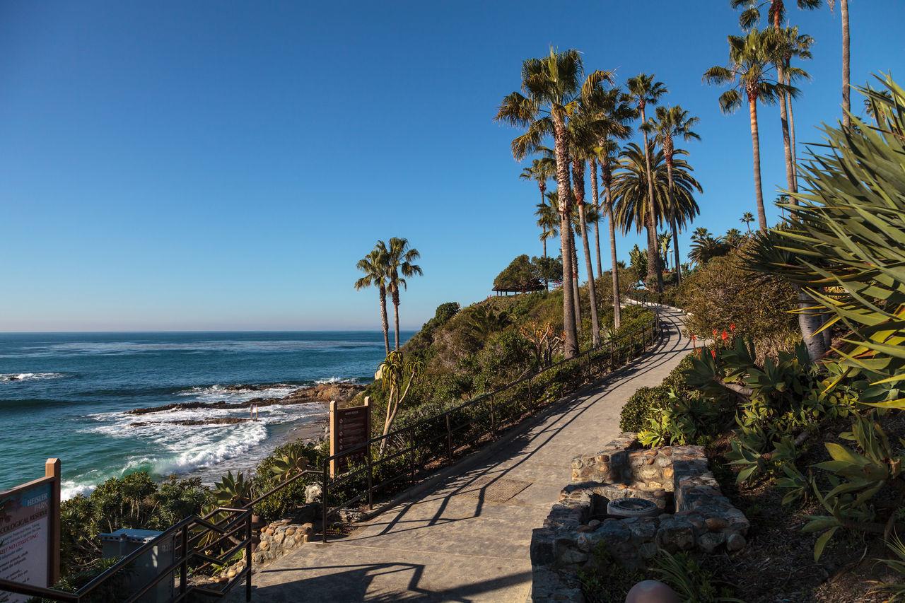Heisler Park garden along the coast of Laguna Beach, California Coastal Coastline Day Garden Heisler Park Laguna Beach, CA Nature No People Ocean Outdoors Path Sea Sea And Sky Sky Tree Walkway
