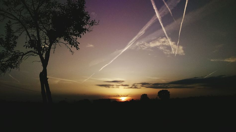 Sunset Nature Beauty In Nature Tree Silhouette Scenics Night Sky Pure Sky Colofulsky Amazing View Clouds Sunset_collection Perfectsky Naturephotography Skyislimit Colorful Enjoying Nature