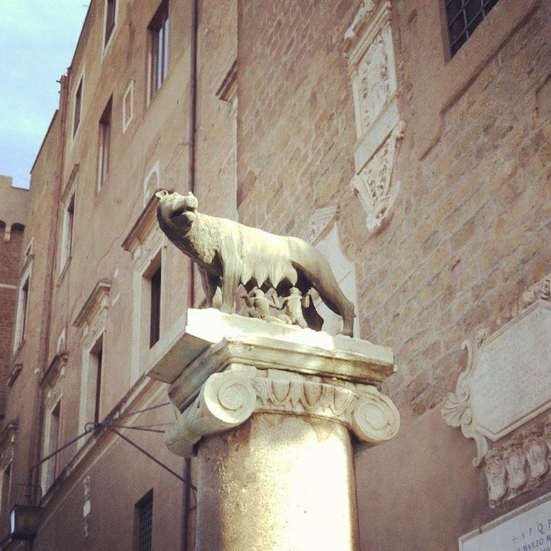 로마의 시작은 늑대젖을 먹고 자란 이 두아이로 부터. Rome Roma Campidoglio 로마 캄피돌리오언덕