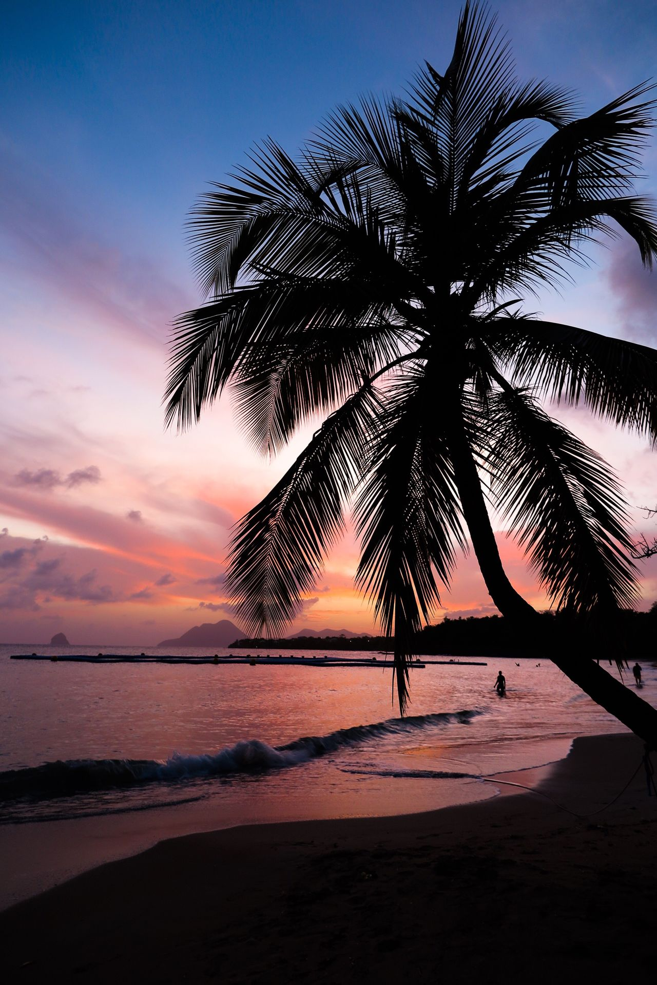 The Great Outdoors With Adobe The Great Outdoors - 2016 EyeEm Awards Pretty Sunset in Martinique 💗 Ocean Palm Tree