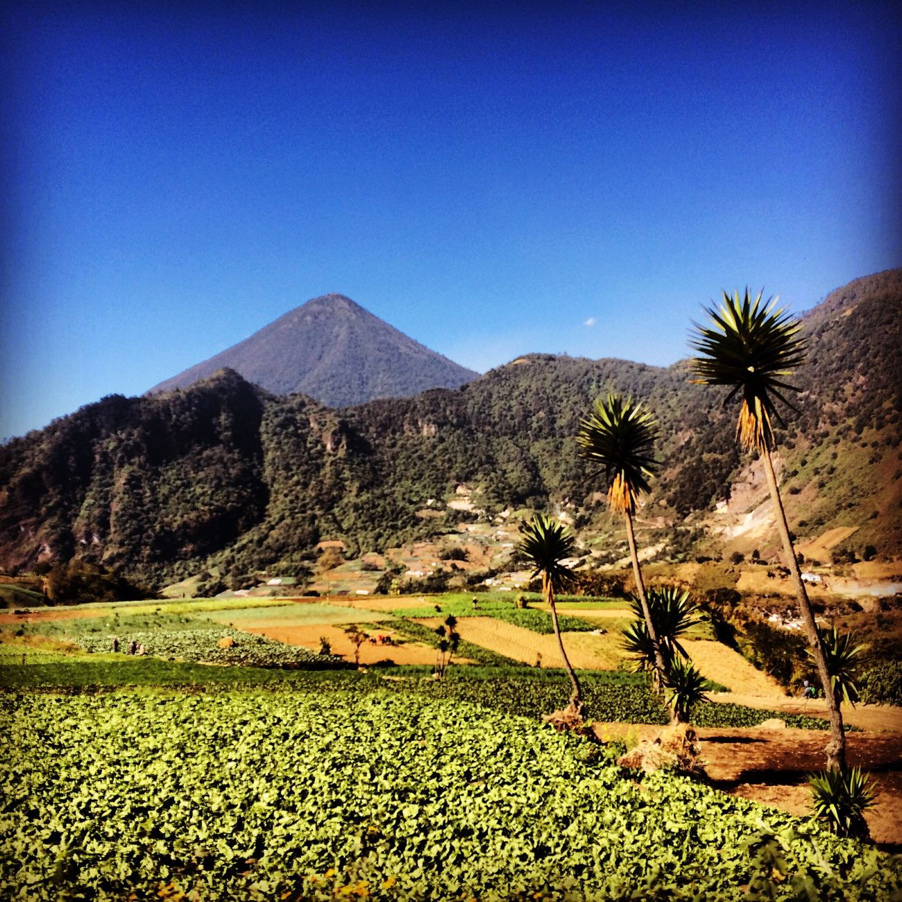 Hello World Enjoying Life Volcano Landscape Guatemala Xela PerhapsYouNeedALittleOfGuatemala