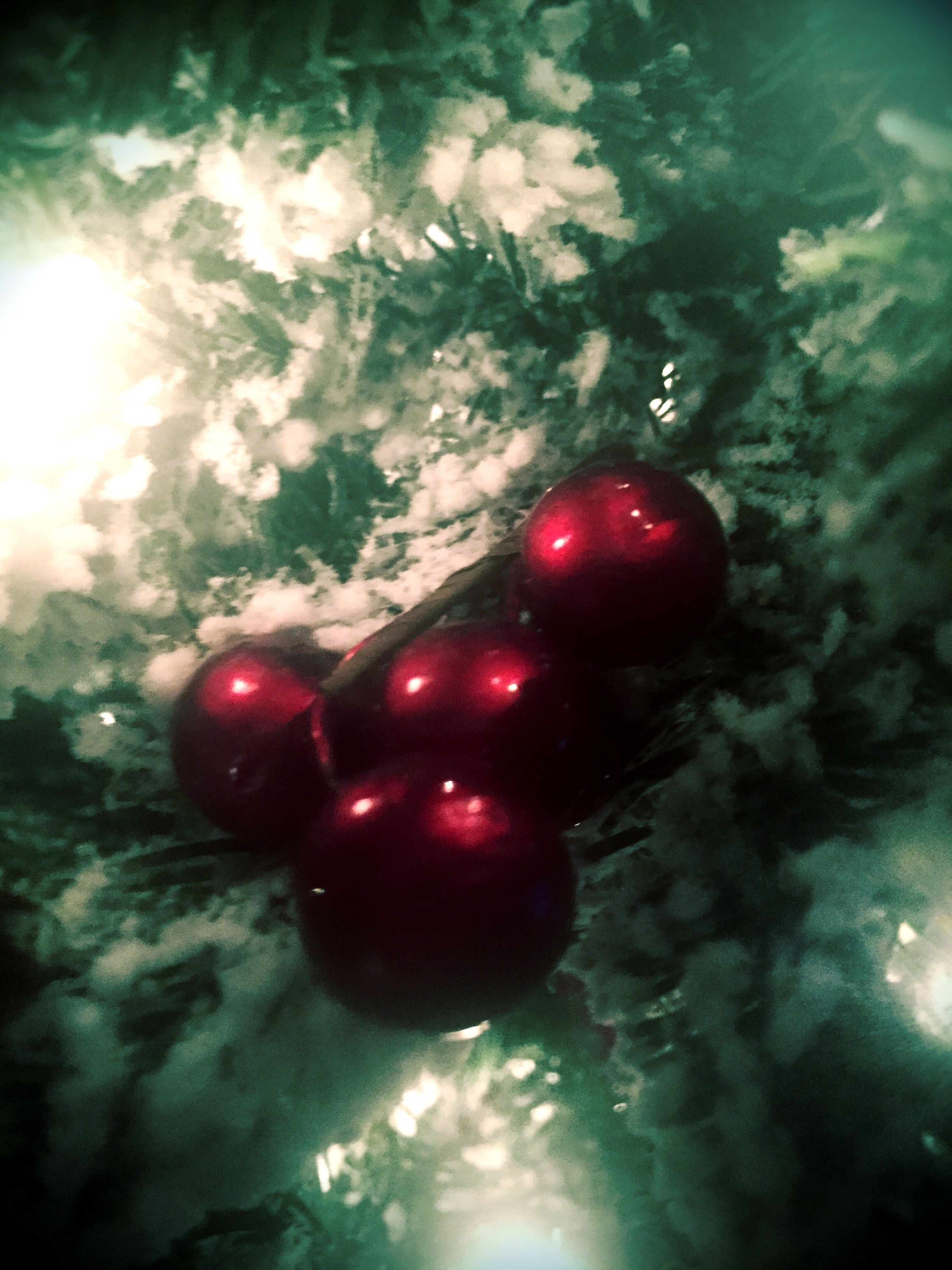 red, no people, food, healthy eating, freshness, close-up, nature, indoors, day, christmas ornament