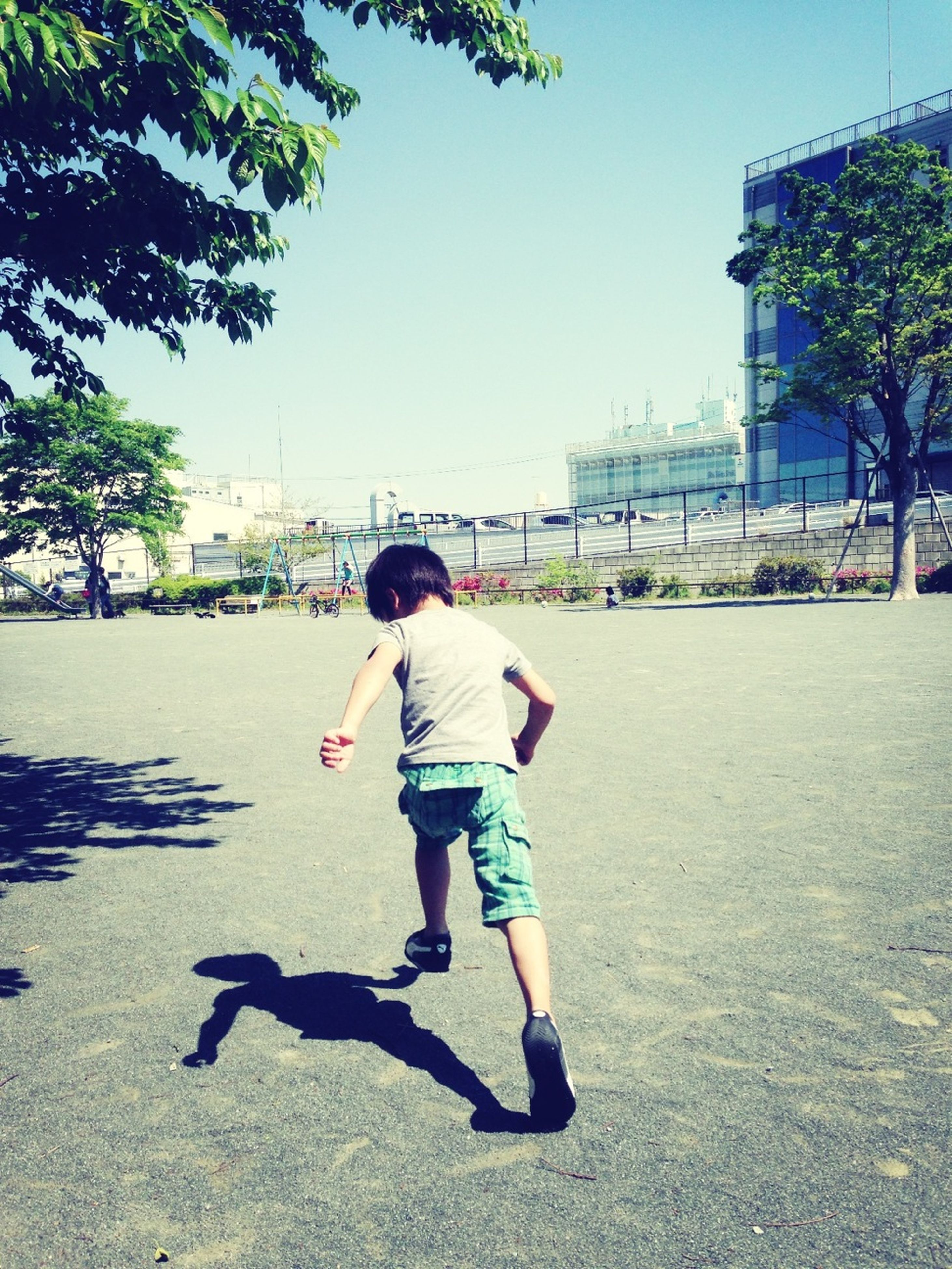 full length, childhood, lifestyles, street, casual clothing, leisure activity, boys, elementary age, girls, tree, rear view, walking, innocence, road, sunlight, city, day, shadow