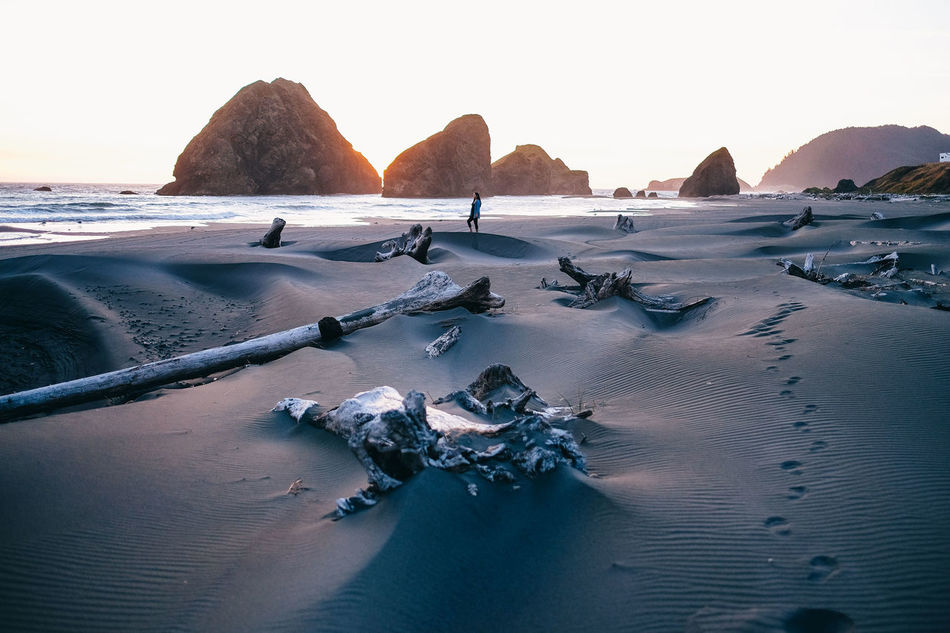 Beautiful stock photos of nature,  Beauty In Nature,  Clear Sky,  Driftwood,  Gold Beach